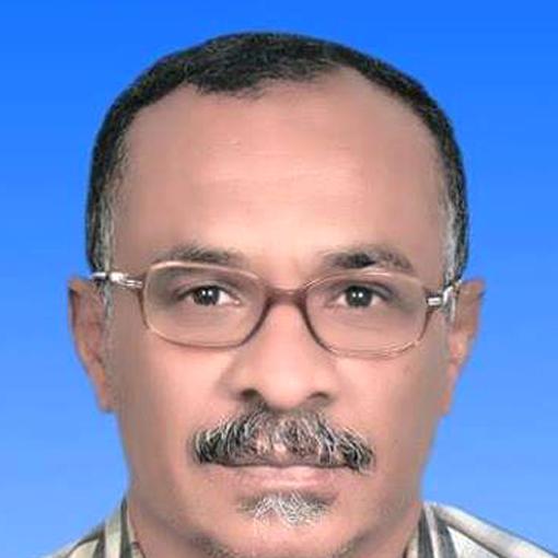 فتحي عمر